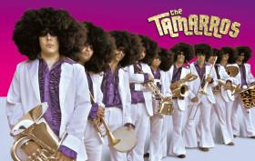 the_tamarros_2